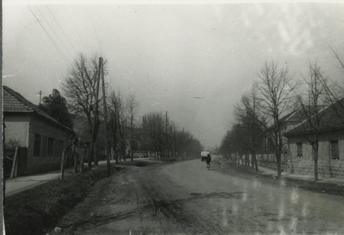 Tokaji utca életképe