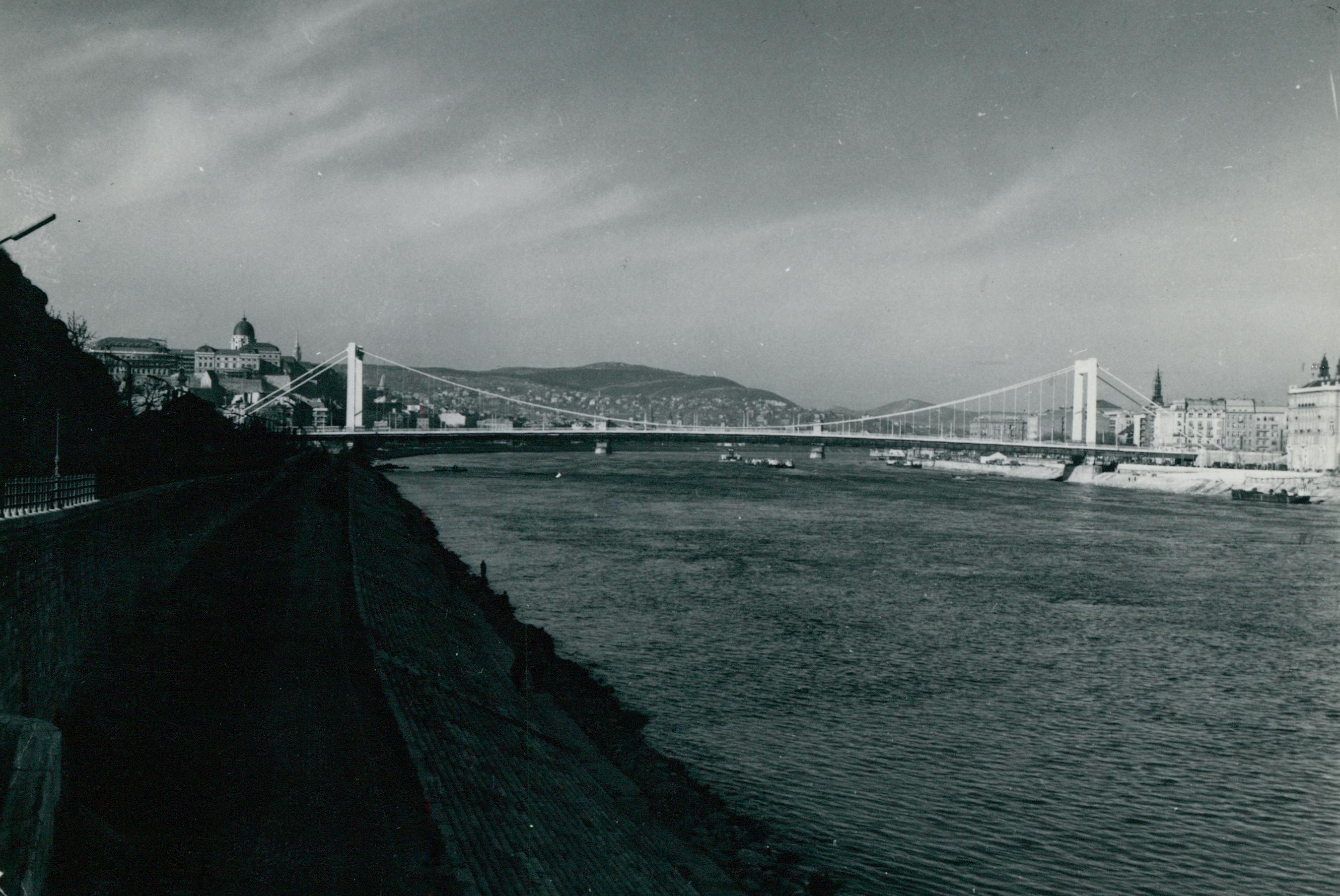 Budapesti látkép az Erzsébet híddal