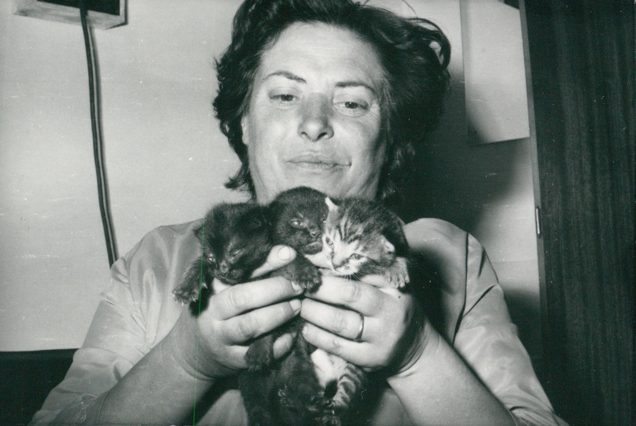Nő macskákkal