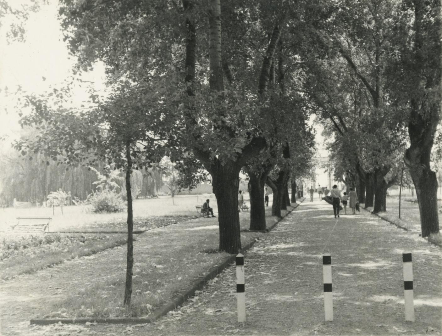 A balatonalmádi Központi Park sétánya