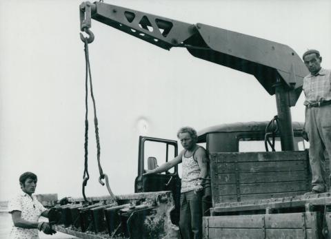 Építkezési pillanatkép Ferihegyen