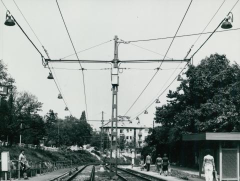 Az 59-es villamos Vas Gereben utcai megállója