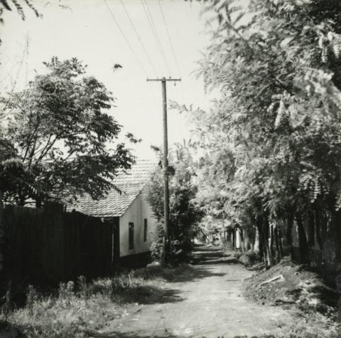 Kiskunfélegyháza, Bercsényi utca