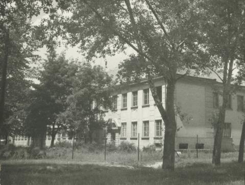 Lajosmizsei központi iskola