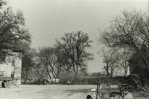 Bük, volt Szapáry-kastély parkja