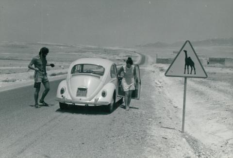 Algériai út