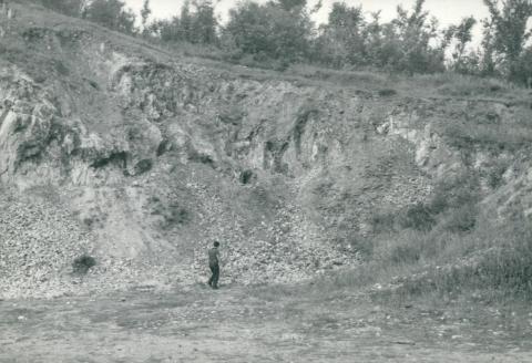 Földtani szolgálat, Rakaca márványbánya