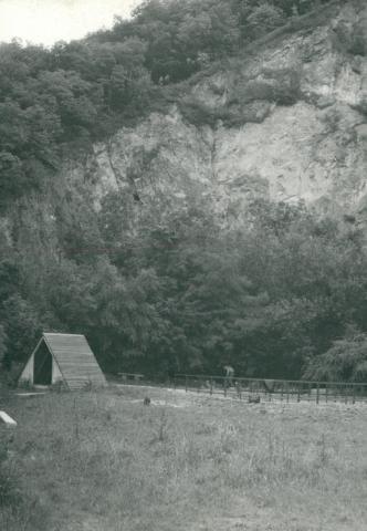 Földtani szolgálat - Pilismarót, Dunabogdány
