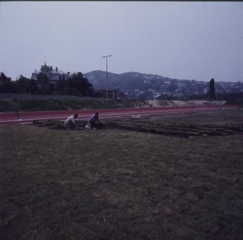 A Magyar Testnevelési Főiskola (ma Testnevelési Egyetem) Csörsz utcai Sporttelepének gyepszőnyegezése