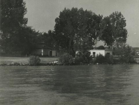 A Balaton-part Balatonkenesénél