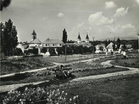 Gyöngyösi városkép a Szabadság tér sarkából