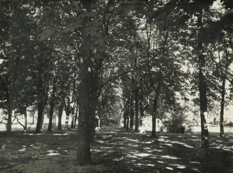 A nagykőrösi Cifrakert