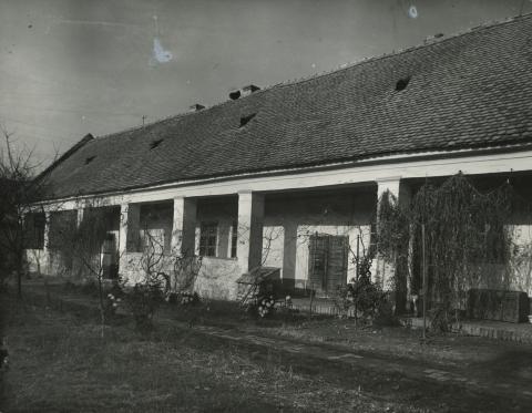 A békési Petőfi Sándor utca 41. szám alatti általános iskola udvara