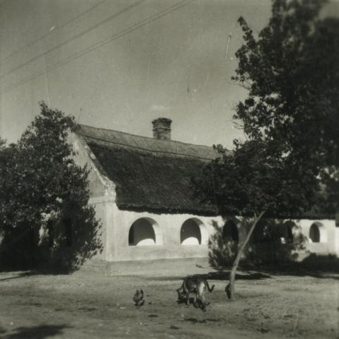 Balatonakali, Kossuth Lajos u. 17. szám alatti  ház