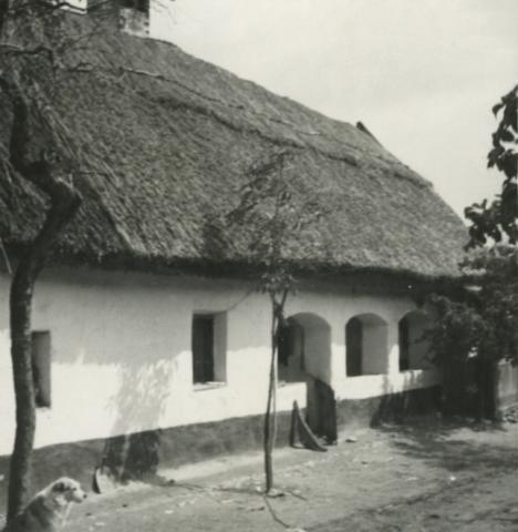 Balatonkenese, Ságvári u. 22.