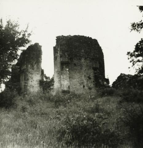 Salföld, pálos templom és kolostor romjai