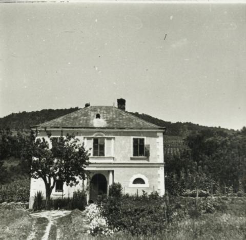 Badacsonyi villa
