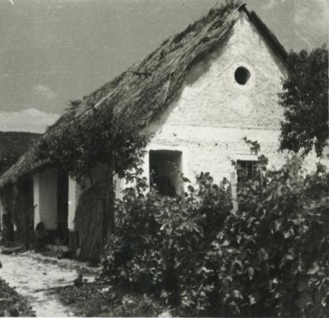 Badacsonyörsi lakóház